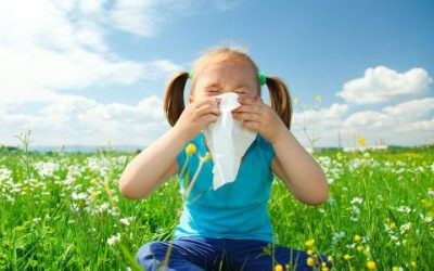 Fight Spring Allergies with Chem-Dry of East Tennessee